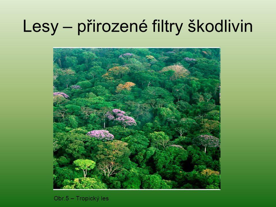 Lesy – přirozené filtry škodlivin