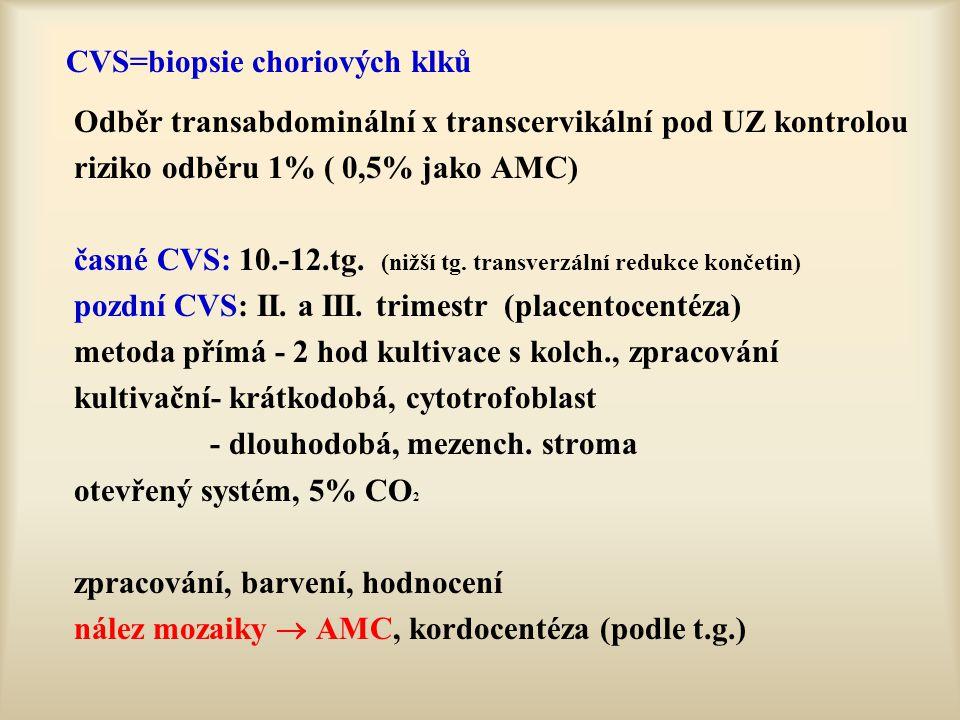 CVS=biopsie choriových klků