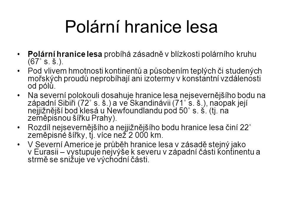 Polární hranice lesa Polární hranice lesa probíhá zásadně v blízkosti polárního kruhu (67˚ s. š.).