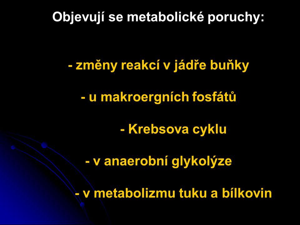 Objevují se metabolické poruchy:. - změny reakcí v jádře buňky