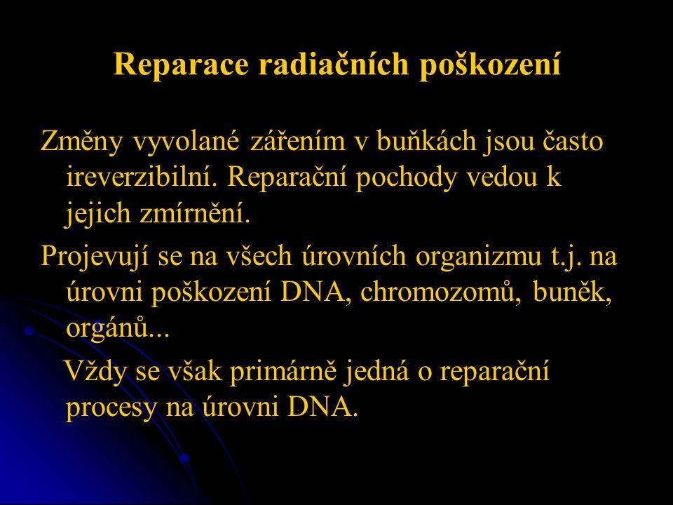Reparace radiačních poškození