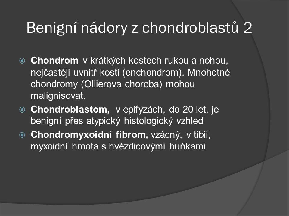 Benigní nádory z chondroblastů 2