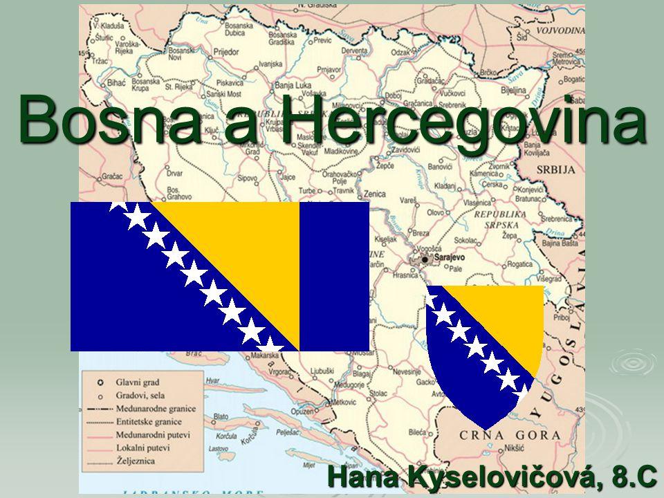 Bosna a Hercegovina Hana Kyselovičová, 8.C