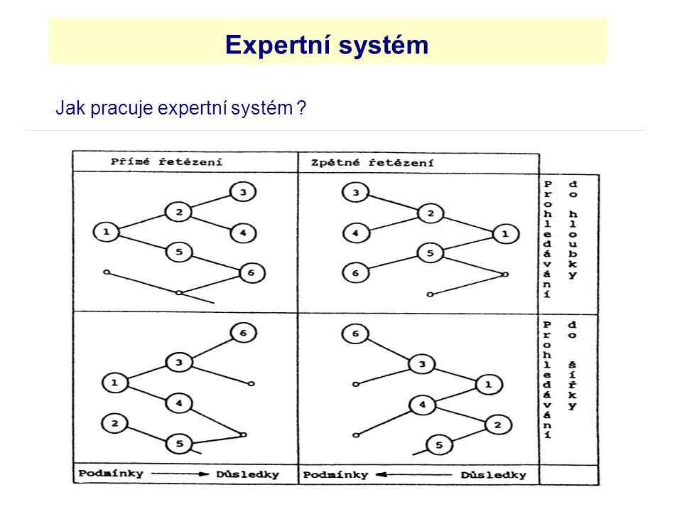 Jak pracuje expertní systém
