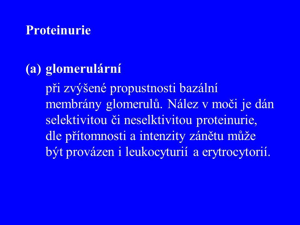 Proteinurie glomerulární.