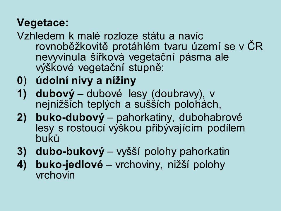 Vegetace: