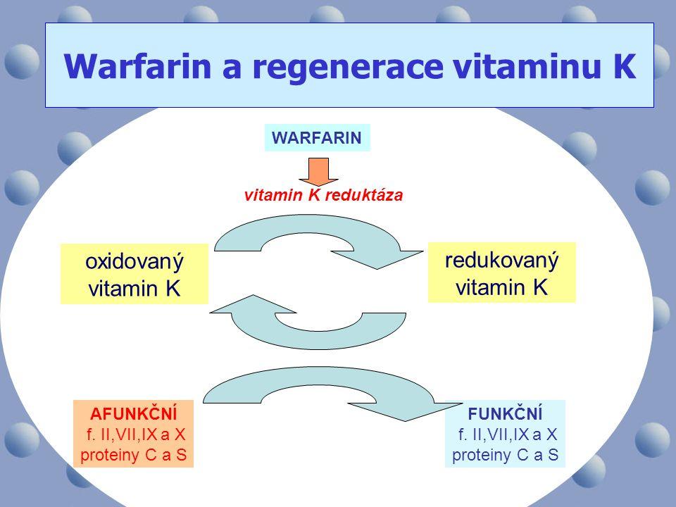 Warfarin a regenerace vitaminu K