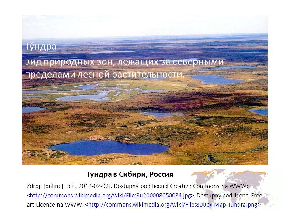 Ту́ндра вид природных зон, лежащих за северными пределами лесной растительности. Тундрa в Сибири, Россия.