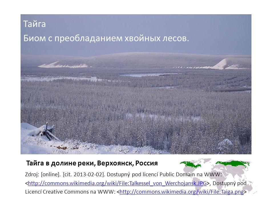 Тайга в долине реки, Верхоянск, Россия