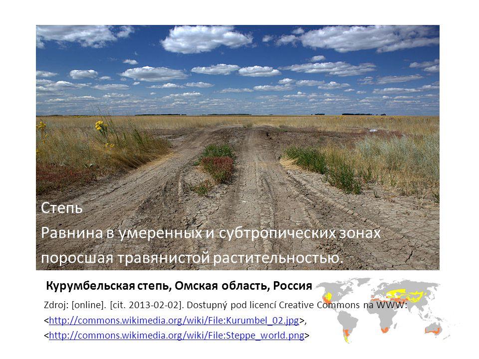 Курумбельская степь, Омская область, Россия