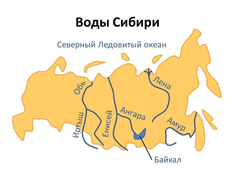 Воды Сибири Северный Ледовитый океан Лена Обь Ангара Енисей Иртыш Амур