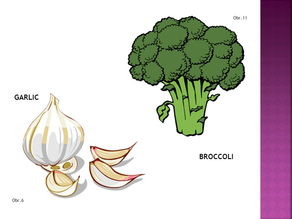 Obr.11 GARLIC BROCCOLI Obr.6