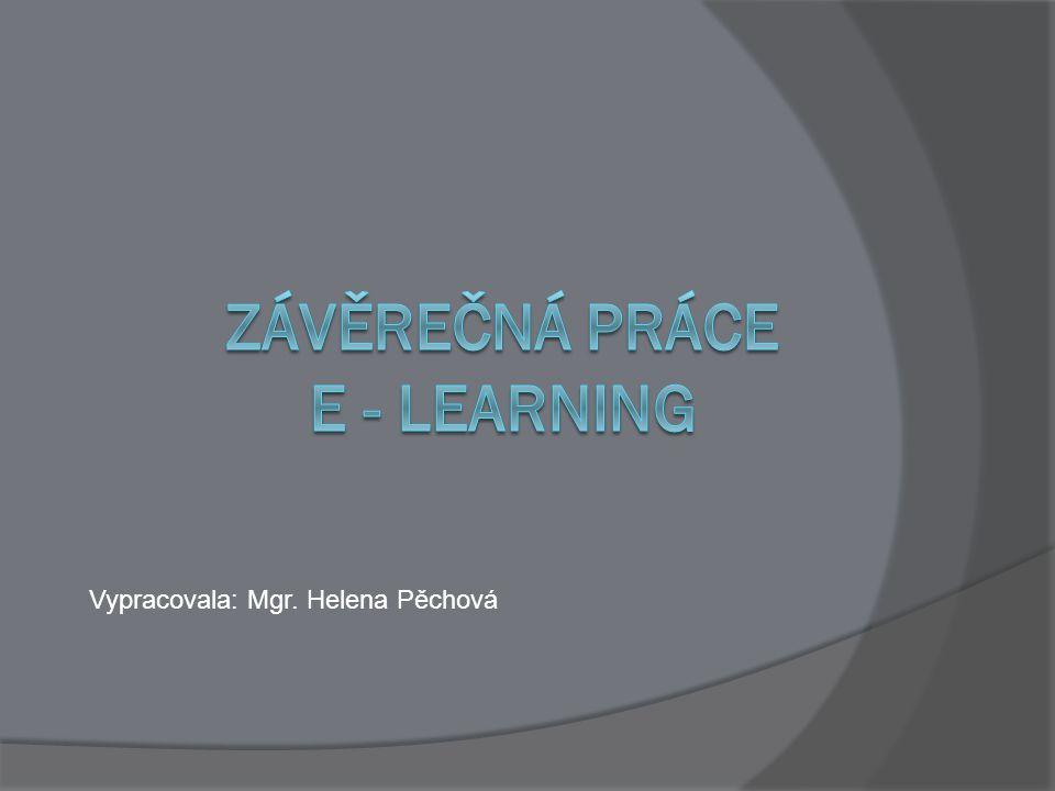 Závěrečná práce E - learning