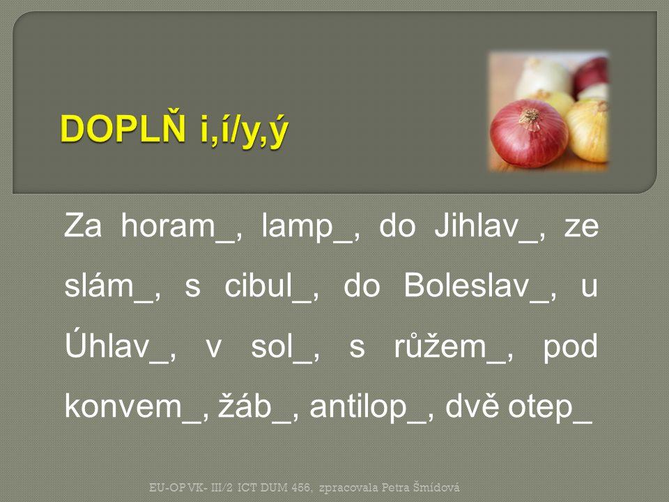 DOPLŇ i,í/y,ý Za horam_, lamp_, do Jihlav_, ze slám_, s cibul_, do Boleslav_, u Úhlav_, v sol_, s růžem_, pod konvem_, žáb_, antilop_, dvě otep_.