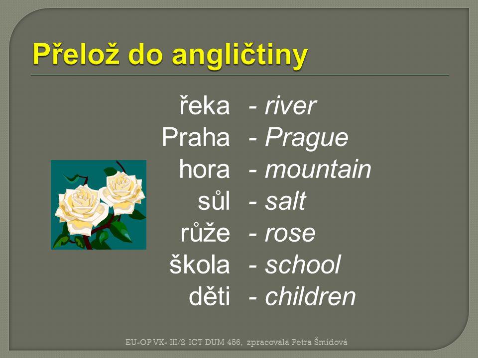 Přelož do angličtiny řeka Praha hora sůl růže škola děti