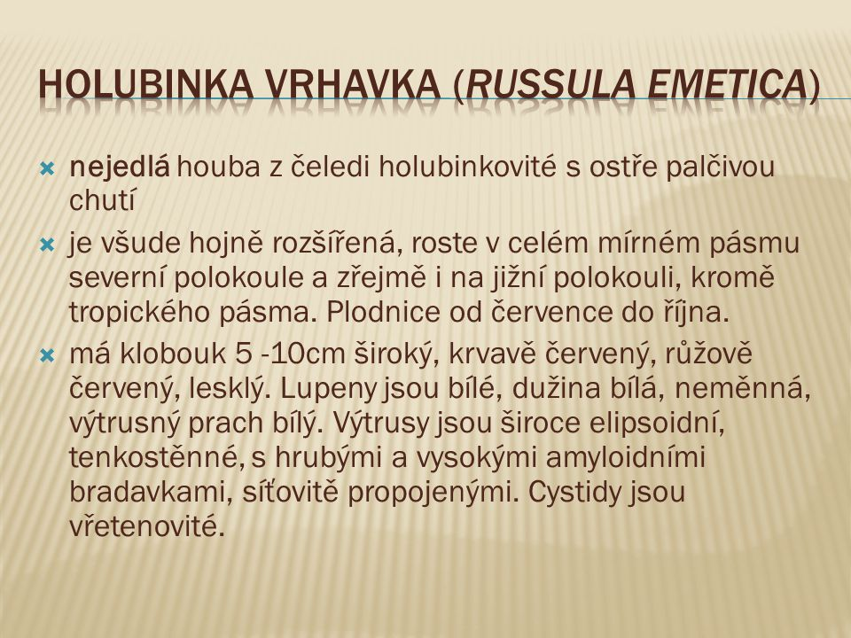 Holubinka vrhavka (Russula emetica)
