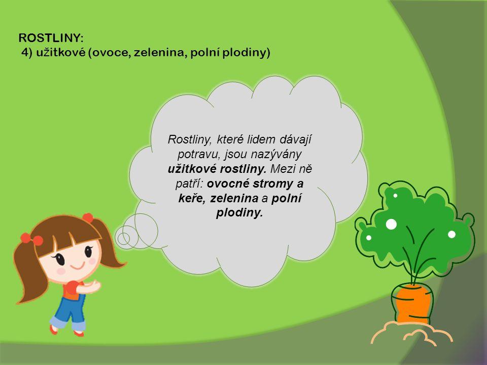 ROSTLINY: 4) užitkové (ovoce, zelenina, polní plodiny)
