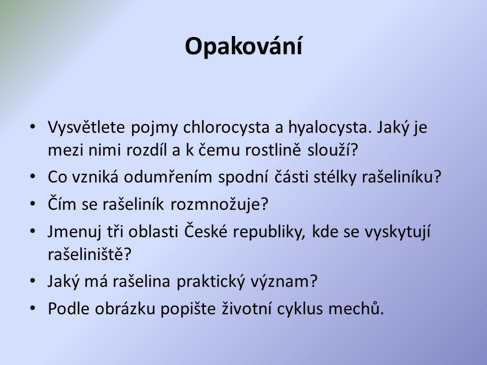 Opakování Vysvětlete pojmy chlorocysta a hyalocysta. Jaký je mezi nimi rozdíl a k čemu rostlině slouží