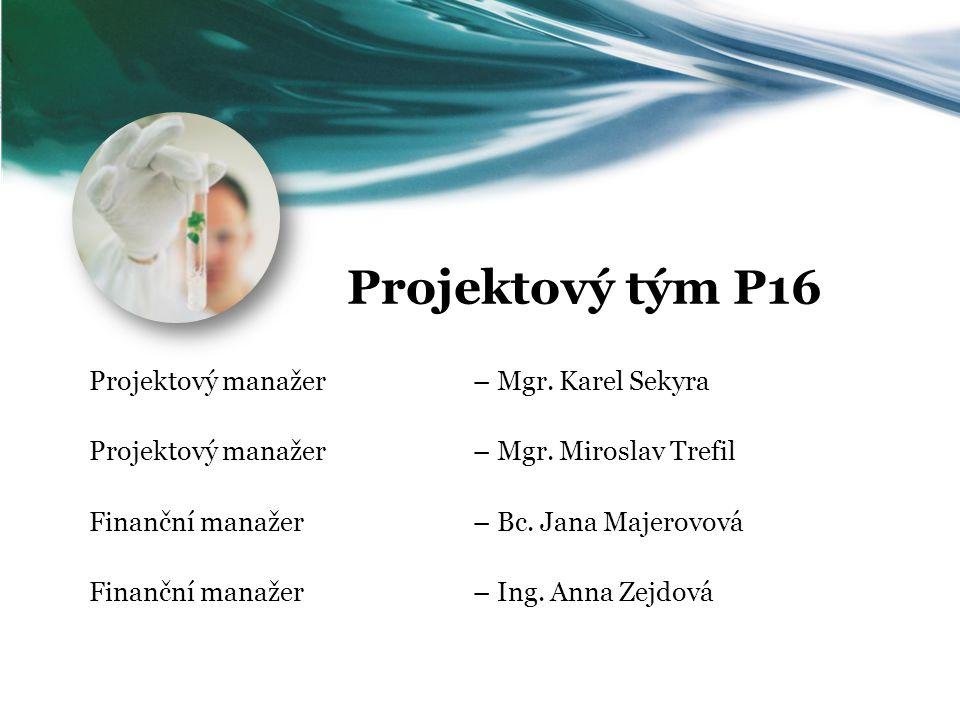 Projektový tým P16 Projektový manažer – Mgr. Karel Sekyra