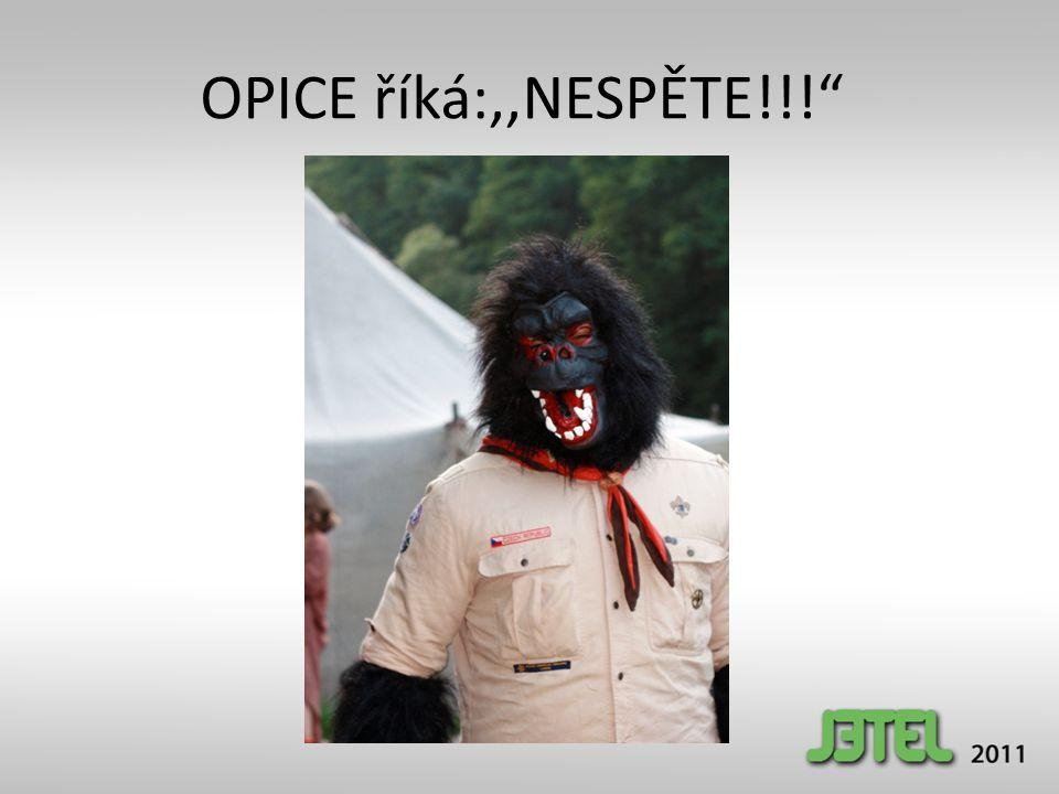 OPICE říká:,,NESPĚTE!!! Bonbónek pod židlí