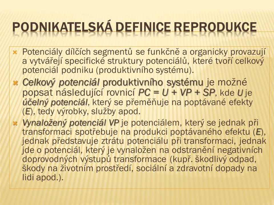 Podnikatelská definice reprodukce