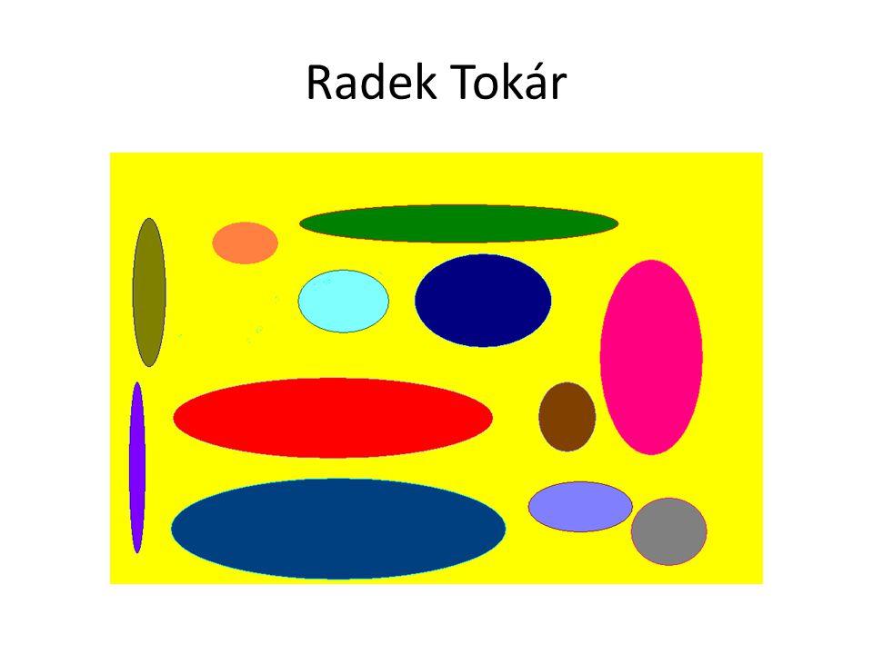 Radek Tokár