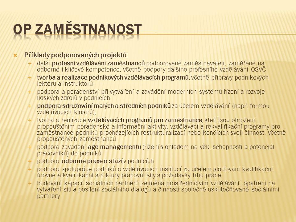 OP Zaměstnanost Příklady podporovaných projektů: