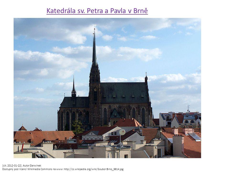 Katedrála sv. Petra a Pavla v Brně