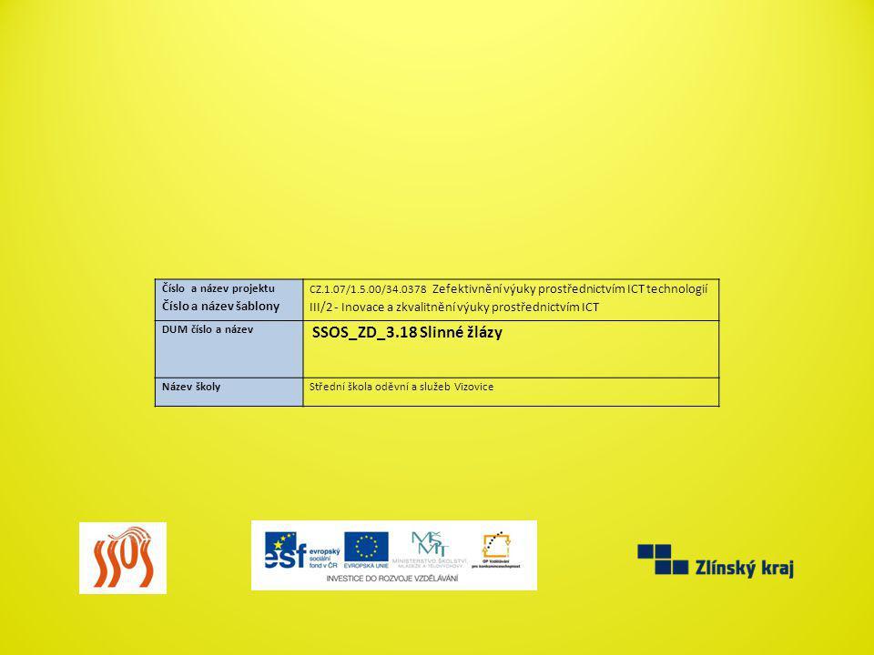 III/2 - Inovace a zkvalitnění výuky prostřednictvím ICT