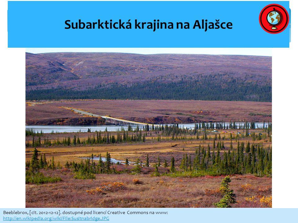 Subarktická krajina na Aljašce