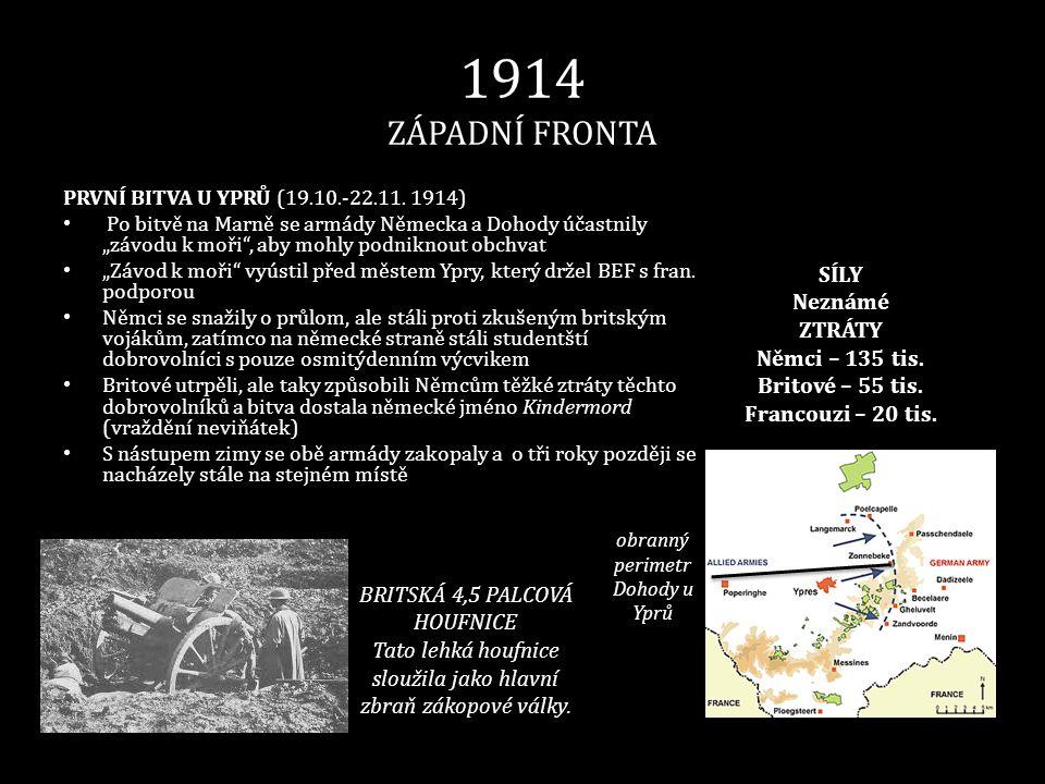 1914 ZÁPADNÍ FRONTA SÍLY Neznámé ZTRÁTY Němci – 135 tis.
