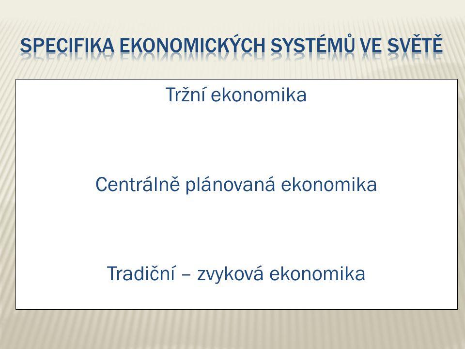 Specifika ekonomických systémů ve světě