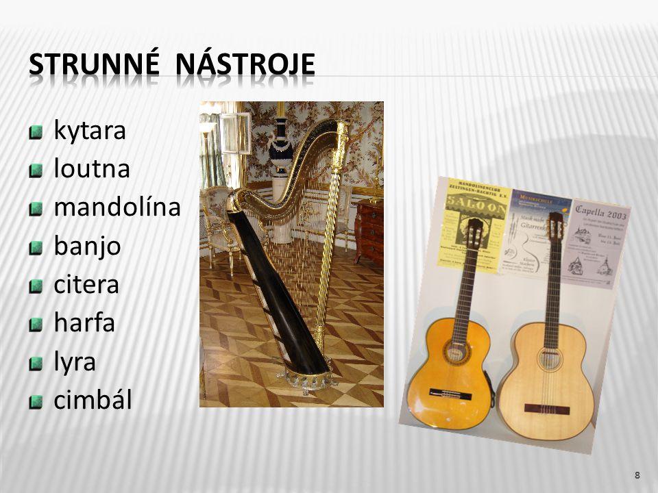 strunné nástroje kytara loutna mandolína banjo citera harfa lyra