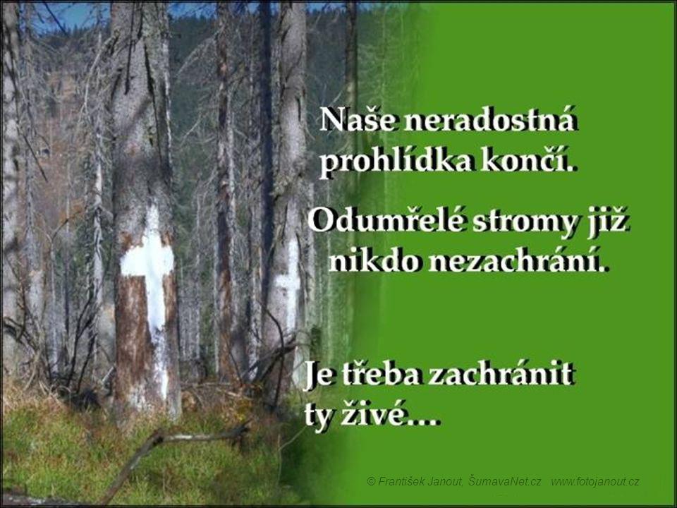 © František Janout, ŠumavaNet.cz www.fotojanout.cz