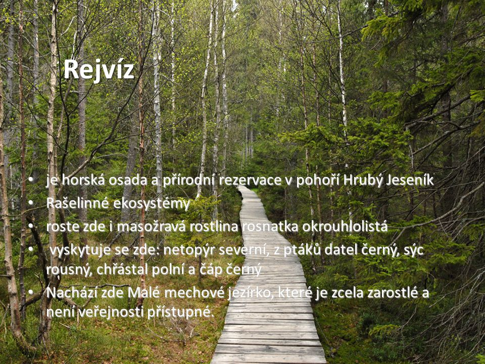 Rejvíz je horská osada a přírodní rezervace v pohoří Hrubý Jeseník