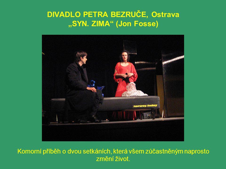 "DIVADLO PETRA BEZRUČE, Ostrava ""SYN. ZIMA (Jon Fosse)"