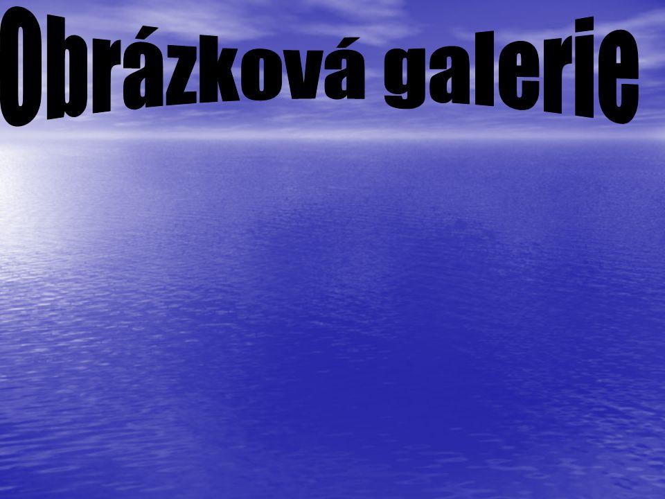 Obrázková galerie