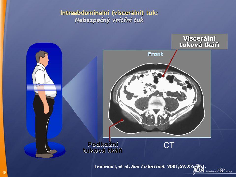 CT Intraabdominalní (viscerální) tuk: Nebezpečný vnitřní tuk