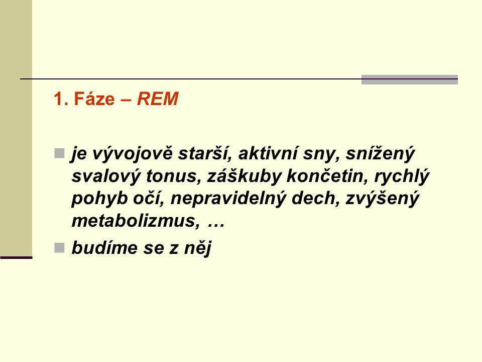 1. Fáze – REM je vývojově starší, aktivní sny, snížený svalový tonus, záškuby končetin, rychlý pohyb očí, nepravidelný dech, zvýšený metabolizmus, …