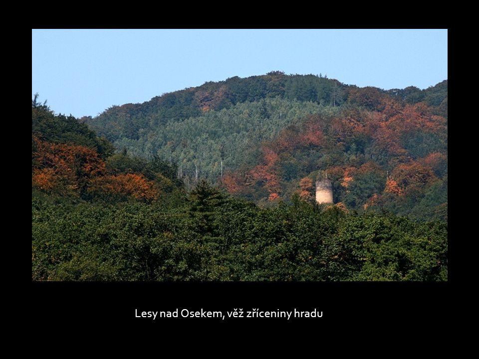 Lesy nad Osekem, věž zříceniny hradu