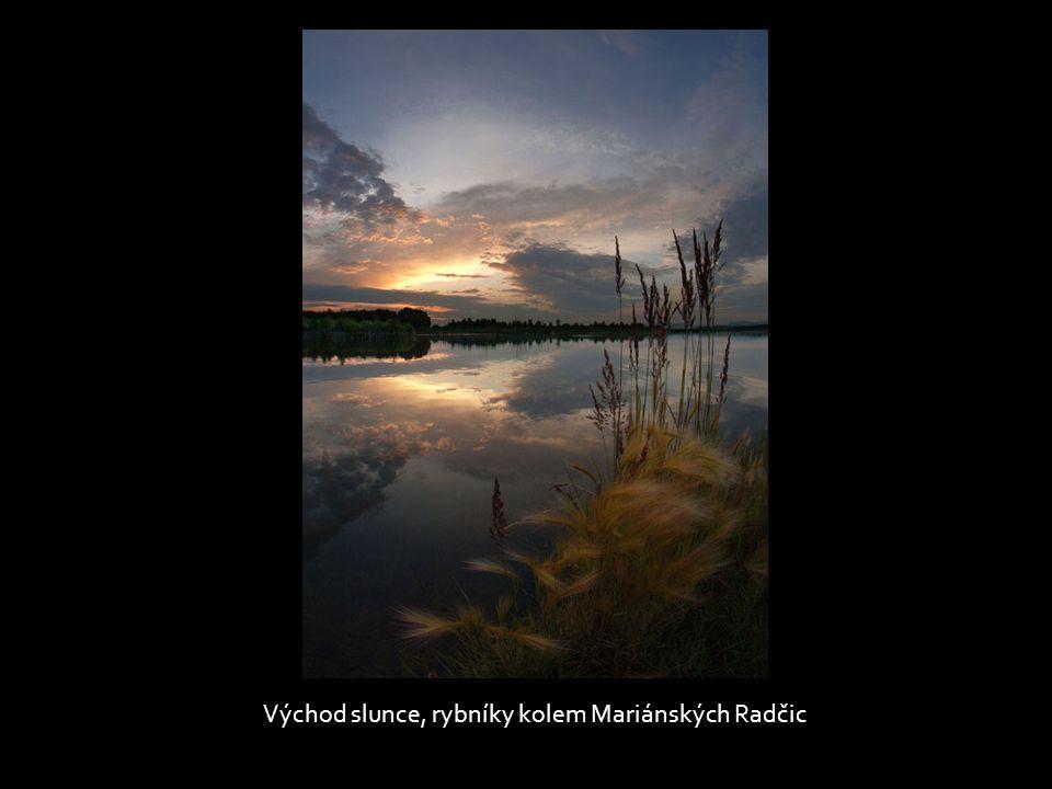Východ slunce, rybníky kolem Mariánských Radčic