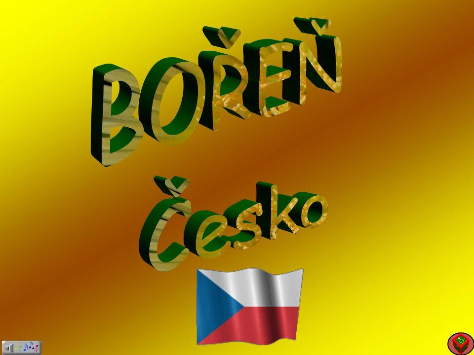 BOŘEŇ Česko