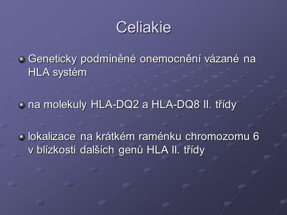Celiakie Geneticky podmíněné onemocnění vázané na HLA systém
