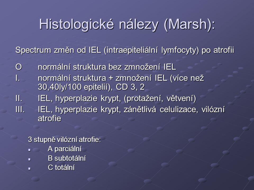 Histologické nálezy (Marsh):