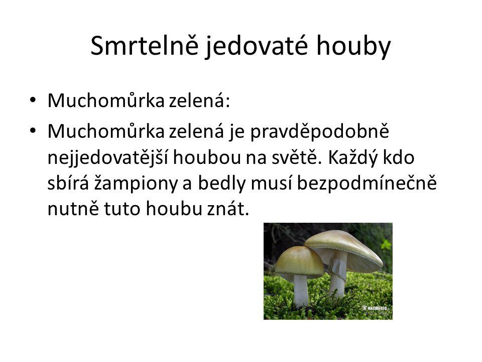 Smrtelně jedovaté houby
