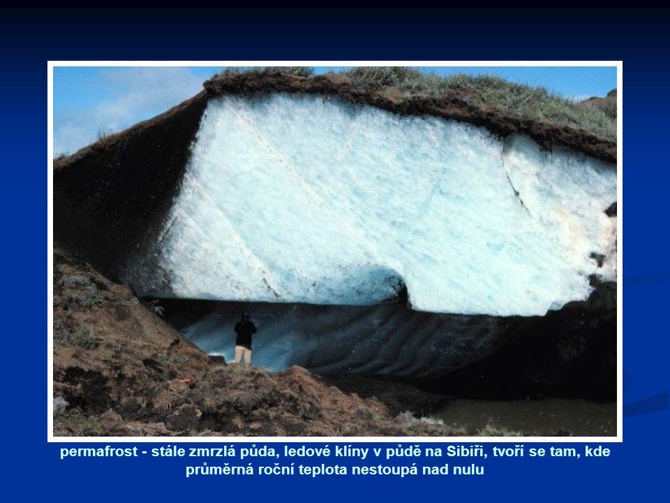 permafrost - stále zmrzlá půda, ledové klíny v půdě na Sibiři, tvoří se tam, kde průměrná roční teplota nestoupá nad nulu