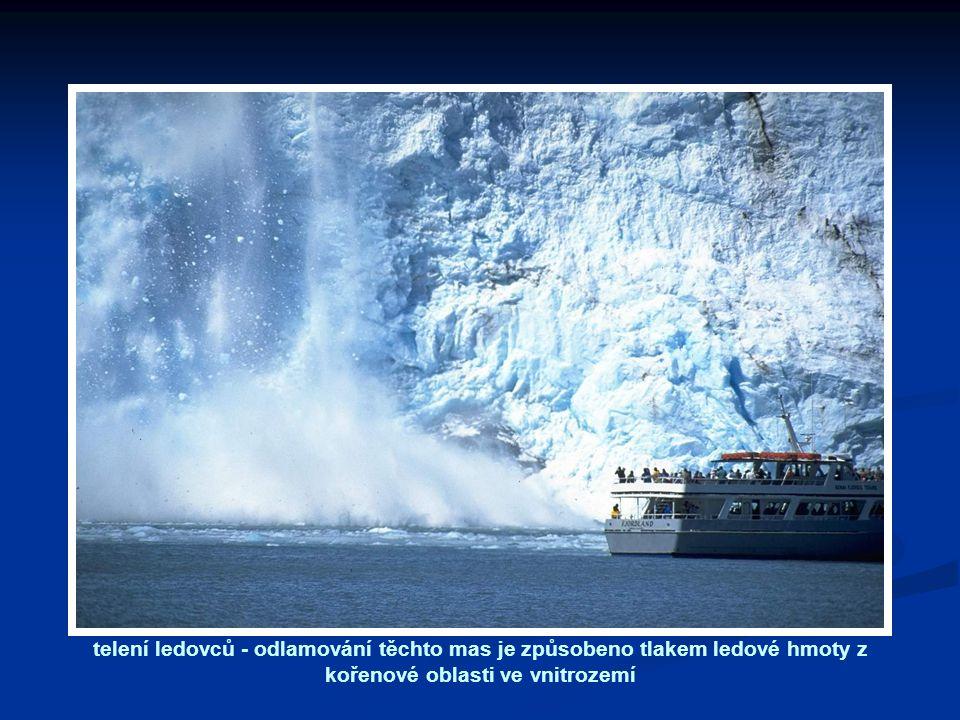 telení ledovců - odlamování těchto mas je způsobeno tlakem ledové hmoty z kořenové oblasti ve vnitrozemí
