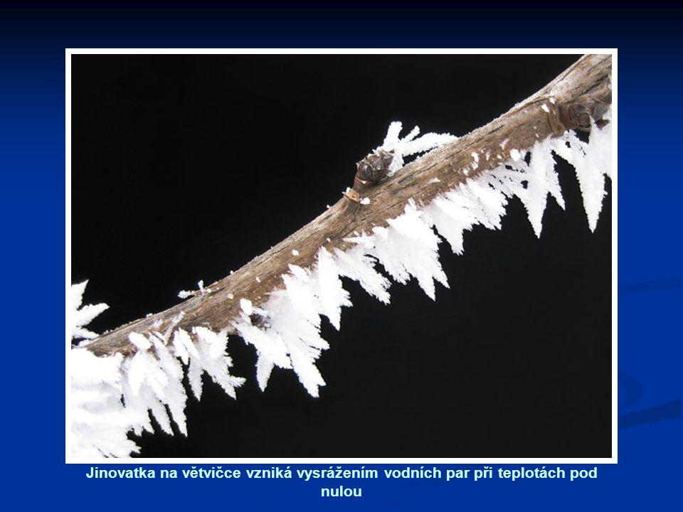 Jinovatka na větvičce vzniká vysrážením vodních par při teplotách pod nulou