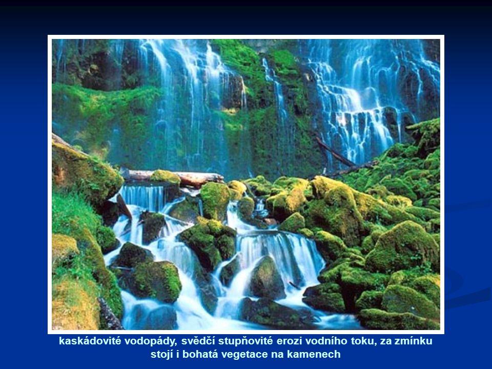 kaskádovité vodopády, svědčí stupňovité erozi vodního toku, za zmínku stojí i bohatá vegetace na kamenech