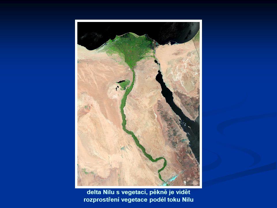 delta Nilu s vegetací, pěkně je vidět rozprostření vegetace podél toku Nilu